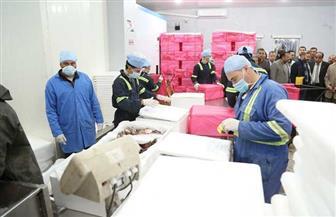 محافظ كفرالشيخ يتفقد عددا من مصانع وشركات منطقة مطوبس الصناعية | صور