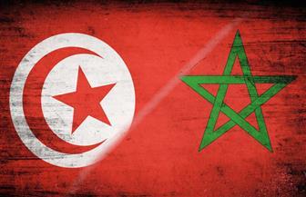 المغرب وتونس يتصدران.. تاريخ المنتخبات العربية الإفريقية في المونديال