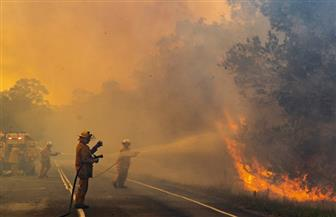 السلطات الأسترالية تفقد الاتصال بطائرة تشارك في إخماد حرائق الغابات