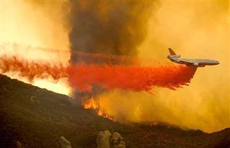 مقتل ثلاثة في تحطم طائرة أسترالية أثناء مكافحتها حرائق الغابات