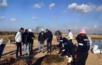 """شركة """"مياه سوهاج"""" تجري تجربة لإنتاج السماد العضوي من مخلفات مزارع الصرف الصحي"""
