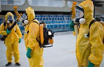 سلالة «كورونا» الجديدة تقتل 17 شخصا حتى الآن.. «الصحة» تستعد بـ8 إجراءات.. و«طبيب»: لا يوجد له علاج
