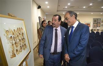 افتتاح معارض جاليري ضي في النحت والتصوير بمعرض القاهرة الدولي للكتاب | صور