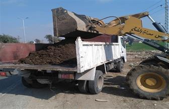 رفع 60 طن قمامة ومخلفات من الطريق الصحراوي ومساكن مركز الفتح في أسيوط| صور