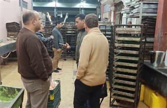صحة جنوب سيناء تضبط 630 كرتونة بطاطس منتهية الصلاحية بشرم الشيخ
