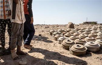 نزع أكثر من 125 ألف لغم خلال 18 شهرا باليمن