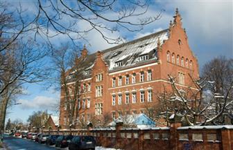 """معهد ألماني: خطر الإصابة بفيروس كورونا الجديد في ألمانيا """"محدود للغاية"""""""