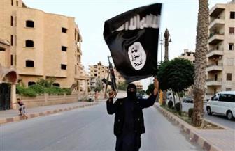 """داعش يعلن في تسجيل صوتي بدء """"مرحلة جديدة"""" تستهدف إسرائيل"""