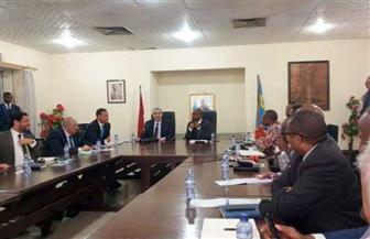 وزير الكهرباء يبحث مع الجانب الكونغولي سبل التعاون المشترك | صور