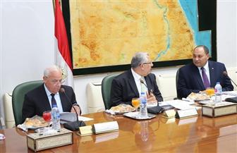 محافظ بورسعيد يبحث مع وزير الزراعة موقف تقنين أوضاع الأراضي | صور