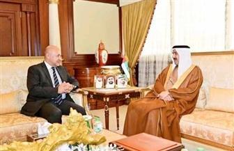 السفير المصري في أبو ظبي يلتقي رئيس المجلس الوطني الاتحادي