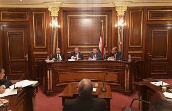 هشام توفيق: 25 ألف سيارة كهربائية بداية جديدة لشركة النصر للسيارات | صور