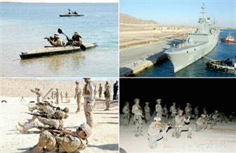 """استمرار التدريب البحري المصري السعودي """"مرجان-16 """".. وأنشطة مكثفة للقوات الخاصة البحرية لكلا الجانبين"""