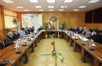 القوى العاملة: تمديد العمل بتخفيض رسوم التصاريح للعمالة المصرية والوافدة بالأردن