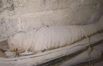 العثور على مخزن آثار بجوار مقبرة بتاح حتب الأول في منطقة سقارة