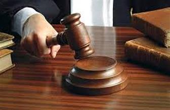 """الحكم في دعوى طلاق والدي طفلي """"السلم"""" بطنطا.. 25 فبراير المقبل"""
