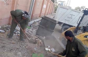 رفع 50 طنا من المخلفات في حملات مكثفة بشوارع مدينة الأقصر   صور