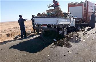 مصرع اثنين وإصابة 4 آخرين في حادث تصادم سيارتين بطريق (القصير - مرسى علم) | صور