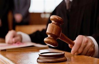 تأجيل جلسة محاكمة الجدة المتهمة بتعذيب حفيدتها بالدقهلية للأربعاء