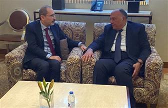 شكري يلتقي نظيره الأردني قبيل الاجتماع الوزاري للدول العربية والإفريقية المطلة على البحر الأحمر| صور