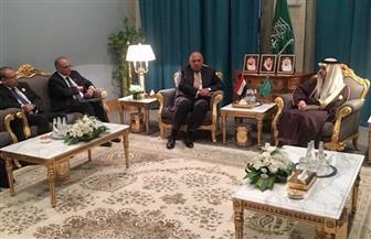 لقاء ثنائي بين وزيري خارجية مصر والسعودية بالرياض لبحث آخر تطورات المنطقة| صور