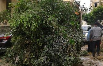 عاصفة ترابية تضرب الإسكندرية وشلل في الحركة المرورية | صور