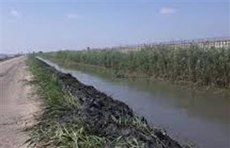 مؤتمر شعبي لحل مشكلات نقص المياه في الشرقية