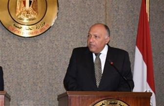 سامح شكري: اتفاق دول القارة الإفريقية على منع التدخلات الأجنبية في ليبيا| فيديو