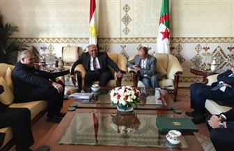 وزير الخارجية يصل الجزائر حاملا رسالة من الرئيس السيسي للرئيس الجزائري