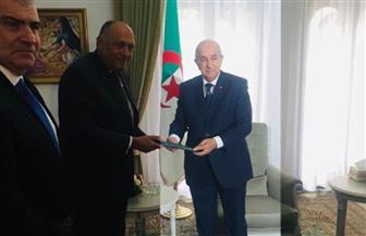 تفاصيل لقاء وزير الخارجية مع الرئيس الجزائري | صور