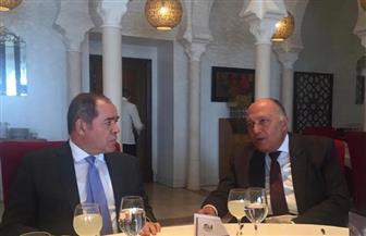 وزير الخارجية يلتقي نظيره الجزائري | صور