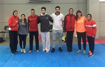 منتخب الكاراتيه يواصل تدريباته بتشيلي استعدادا لبطولة «سيرياس آيه» | صور