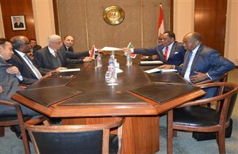 نائب وزير الخارجية يستقبل وزير خارجية الكونغو برازافيل | صور