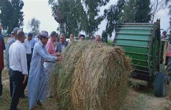 """""""الزراعة"""": جمع وتدوير أكثر من 1.4 مليون طن قش الأرز"""