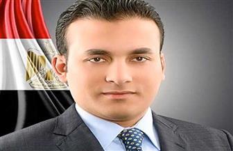 """نائب بـ""""الشيوخ"""": الشعب المصري برفض التصالح مع الإرهابيين وكل من حمل السلاح ضده"""