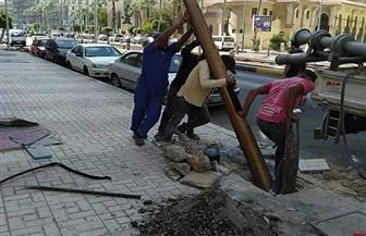 رفع أعمدة الإنارة الآيلة للسقوط في الإسكندرية استعدادا للشتاء | صور