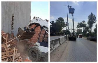 تنفيذ إزالة فورية بمدينة سرس الليان.. واستمرار أعمال الصيانة لأعمدة الإنارة بالباجور بالمنوفية | صور