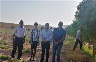 متدربو دفعة الفريق العصار بالبرنامج الرئاسي يزورون حدود مصر الجنوبية | صور