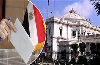 بدء تصويت المصريين في اليونان وقبرص في انتخابات مجلس النواب 2020 عبر البريد