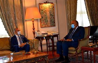 وزير الخارجية يؤكد موقف مصر الثابت من دعم الحقوق المشروعة للشعب الفلسطيني | صور