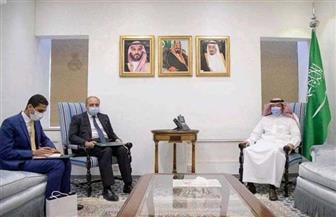 السفير المصري في الرياض يلتقي نائب وزير الخارجية السعودي