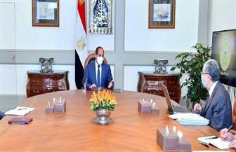 الرئيس السيسي يوجه بتعزيز جهود تنفيذ مشروعات الربط الكهربائي مع دول الجوار
