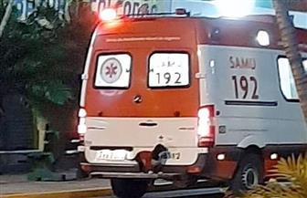 «كلبة وفية» تقتحم سيارة إسعاف للاطمئنان على مالكها