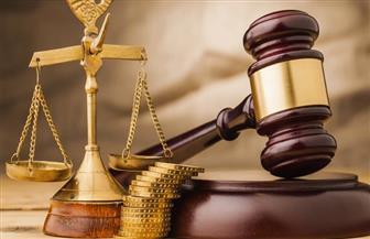 اعتماد قرار النيابة العامة المصرية في مجال استرداد الآثار المهربة في اجتماع أممي
