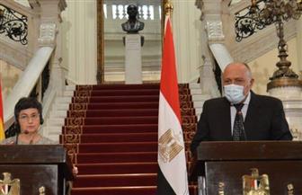 وزير الخارجية: نتطلع لتشكيل حكومة جديدة تلبي طموحات الشعب اللبناني