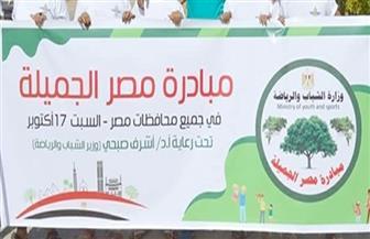 """تنفيذ مبادرة """"مصر جميلة"""" بمشاركة 100 شاب وفتاة بالدقهلية"""