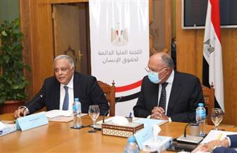 وزير الخارجية يشارك في اجتماع الهيئة الاستشارية للإعداد للإستراتيجية الوطنية لحقوق الإنسان | صور