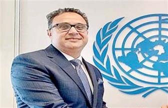 إقرار مشروع قرار مصري عن «مكافحة الجريمة المنظمة عبر الوطنية ضد الممتلكات الثقافية»