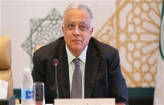 السفير أحمد إيهاب يكشف الخطوات التحضيرية لأول إستراتيجية وطنية لحقوق الإنسان بمصر