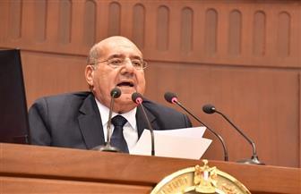 رئيس مجلس النواب يهنئ المستشارعبد الوهاب عبد الرازق لانتخابه رئيسا لمجلس الشيوخ